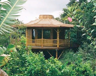 How long will these bamboo houses last?
