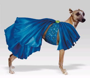 The height of pet fashion rises with E E hallstrom Haute Couture. Since  September of 2004 ca68689ff50d