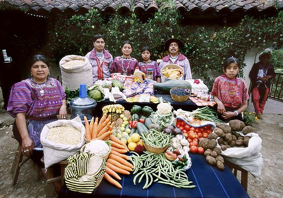 time magazine photo essay what the world eats Hungry planet: what the world eats japan: the ukita family of kodaira city  food expenditure for one week: 37,699 yen or $31725 favorite foods:.
