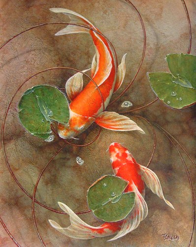 koi wallpaper. You don#39;t need to be a koi