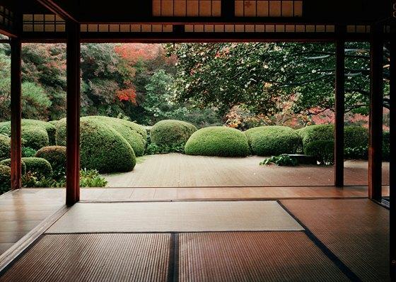 Japanese Zen Garden 560 x 398