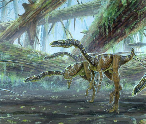 wonderful_dinosaur_art_1.jpg